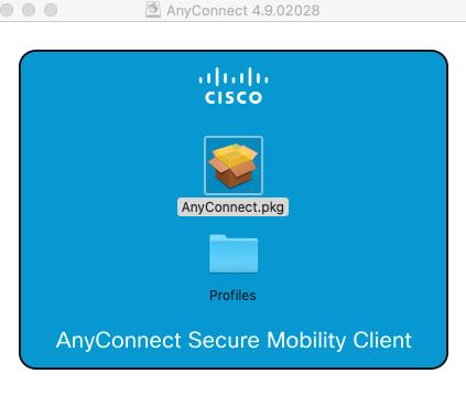 VPN installation screen